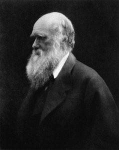 הראשון לזהות. דרווין ב-1868