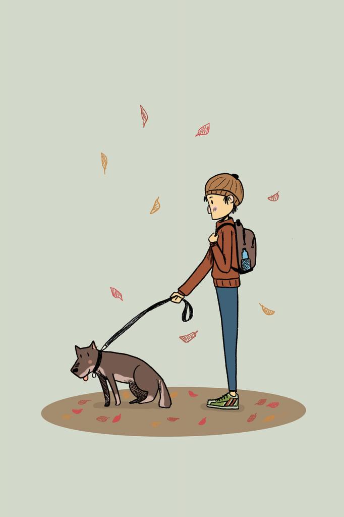 טיול עם הכלב